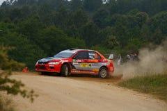 De Verzameling D'Italia Sardegna van WRC 2011 - MARRONE Royalty-vrije Stock Foto