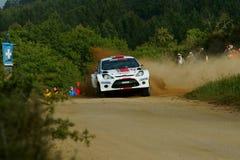 De Verzameling D'Italia Sardegna van WRC 2011 - TANAK Royalty-vrije Stock Foto's