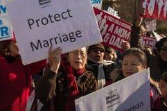 De Verzameling van het huwelijk bij het Hooggerechtshof van de V.S. Royalty-vrije Stock Fotografie