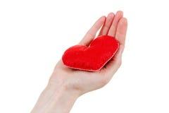 De verzekering van de gezondheid of liefdeconcept Stock Afbeeldingen