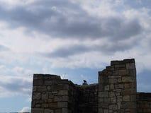 De vesting van Kalemegdan royalty-vrije stock afbeeldingen