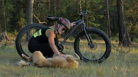 De vette fiets riep ook fatbike of vet-bandfiets in de zomer het berijden in het bos stock videobeelden