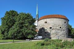 De vette toren van Margaret en torenspits van St Olaf ` s Kerk in Tallinn, Estland Stock Afbeeldingen