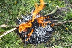 De vieilles branches des arbres fruitiers sont brûlées au jardin de fruit d'enjeu au printemps Concept : travail de jardin de res images libres de droits