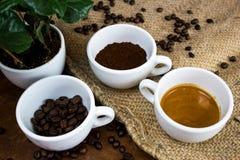De vier fasen van het koffieleven stock afbeelding