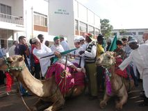 De viering van de Miladv.n. Nabbi Royalty-vrije Stock Afbeeldingen