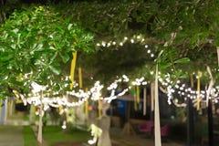 De viering van decoratie het lichte Kerstmis hangen op boom Royalty-vrije Stock Afbeelding
