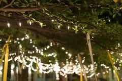De viering van decoratie het lichte Kerstmis hangen op boom Royalty-vrije Stock Fotografie