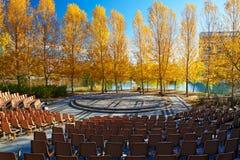 De vierkante en herfstbomen royalty-vrije stock foto's