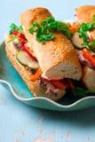 De Vietnamese Sandwich van Turkije Royalty-vrije Stock Afbeeldingen