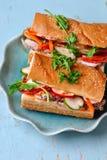 De Vietnamese Sandwich van Turkije Stock Foto's