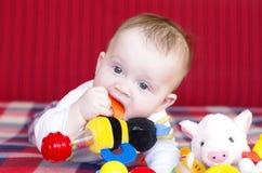 De vijf-maanden baby knaagt aan een stuk speelgoed liggend op een bank Stock Fotografie