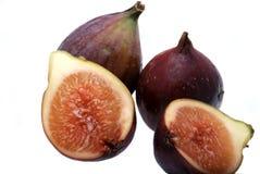 De vijgeboom van het fruit Royalty-vrije Stock Fotografie