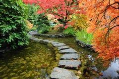 De vijver en de weg van de tuin Stock Fotografie
