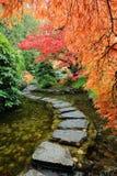 De vijver en de weg van de tuin Stock Afbeelding