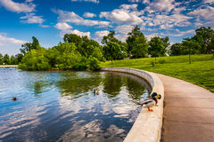 De vijver in Patterson Park in Baltimore, Maryland stock foto's