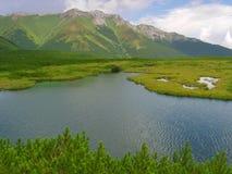 De vijver van de berg in Slowaakse Hoge Tatras Stock Foto