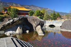 De vijver van de de tempelgoudvis van Chongsheng, Dali, China Royalty-vrije Stock Foto