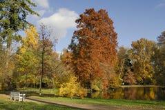 De Vijver van de herfst stock foto's