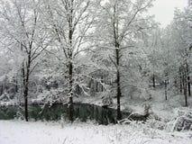 De Vijver van de sneeuw Royalty-vrije Stock Afbeeldingen