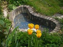 De vijver van de tuin Royalty-vrije Stock Afbeeldingen