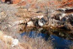 De vijver van Texas in het weiland Royalty-vrije Stock Afbeeldingen