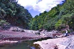 De Vilasha-Rivier met mooie kusten Stock Afbeelding