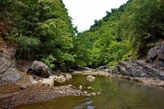 De Vilasha-Rivier met mooie kusten Stock Afbeeldingen