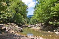 De Vilasha-Rivier met mooie kusten Stock Foto