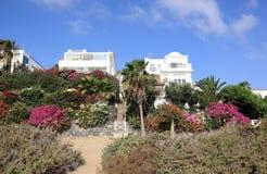 De villa's van de luxe beachfront vakantie. Royalty-vrije Stock Foto