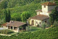 De villa van het platteland Stock Foto