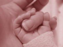 De Vinger van de Holding van de baby Royalty-vrije Stock Foto's