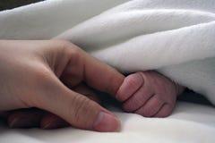 De vinger van de pasgeboren moeder van de babyholding Royalty-vrije Stock Foto's