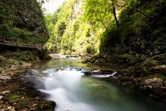 De Vintgarkloof en de houten weg tapten dichtbij af, Slovenië Royalty-vrije Stock Fotografie