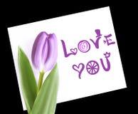 De violette tulp op Witboeknota houdt van u Geïsoleerde op zwarte achtergrond Royalty-vrije Stock Foto