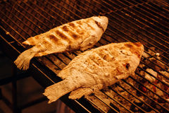 De vis kookt op Grillnet Royalty-vrije Stock Foto's