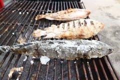 De vis wordt geroosterd op een staalrooster stock afbeelding