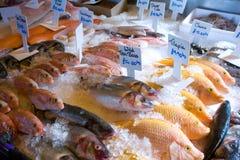 De vishandelaren tonen. Stock Fotografie