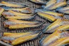 De vissen drogen Royalty-vrije Stock Afbeelding