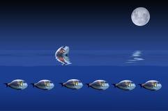 De vissen en de maan Stock Afbeelding