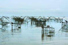 De vissen heffen netto op stock afbeeldingen