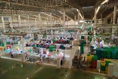 De vissen kunnen de Industrie Pum Pui Brand Stock Foto