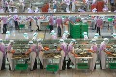 De vissen kunnen de Industrie Pum Pui Brand Royalty-vrije Stock Foto