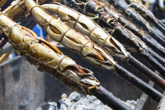 De vissen met zout Royalty-vrije Stock Foto's