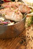 De vissen roosterden of filtert vissenverscheidenheden royalty-vrije stock afbeeldingen
