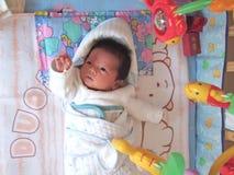 De vissen van de baby en stuk speelgoed royalty-vrije stock foto
