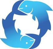 De Vissen van de cirkel Stock Fotografie