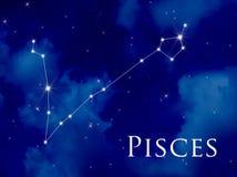 De Vissen van de constellatie royalty-vrije illustratie