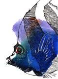 De vissen van de engel Stock Afbeelding