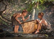De vissen van de jongenslach op handen Stock Foto
